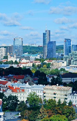Už Lietuvos ekonominius interesus